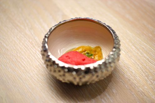 Sea urchin ceviche with hibiscus