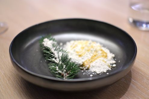 Pine snow with honey